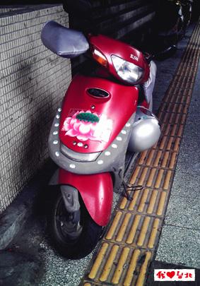 Imag7688